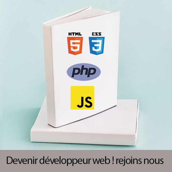 formation developpeur web